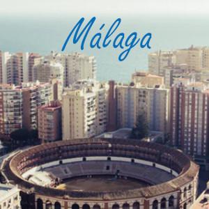 Viviendas en Málaga